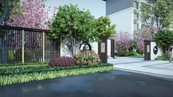 崇明岛.紫竹园